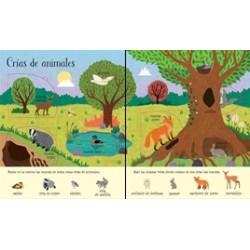 AL AIRE LIBRE | SOLALAS PARA PEQUES | LIBROS INFANTILES USBORNE