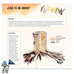 DESCUBRO LOS ÁRBOLES Y APRENDO A RECONOCERLOS