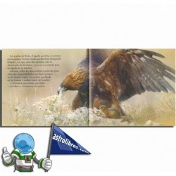 Valores. El águila y la paz